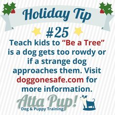 """Atta Pup Training Blog: Holiday Tip #25------    Plant your feet, fold your branches, and quietly watch your roots grow! """"Being a tree"""" will help keep kids safe if a dog gets too rambunctious or if an unknown dog approaches them. Learn more here- http://www.doggonesafe.com/Dog_Safety_for_Kids"""
