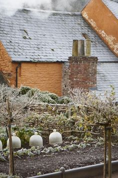 Landscaping Software - Offering Early View of Completed Project Arne-Maynard_Frosted_Kitchen_Garden_Britt_Willoughby_Dyer-Gardenista Fresco, Dream Garden, Home And Garden, Landscape Design, Garden Design, Winter Crops, Mourning Dove, Winter Plants, Potager Garden