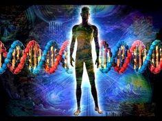 La Creacion del Ser Humano - La incognita