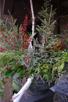 Porch Pot created on site by a Lexington Floral designer~ featuring Birch Poles, Birch Bark Roll, and All-Weather Berries.