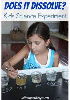 Fun Science Experiments for kids- see which solids will dissolve in water.
