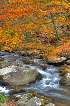 Oconaluftee River in the Great Smoky Mountains National Park, near Bryson City, NC.