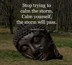 Stop trying to calm the strom