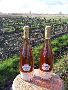 Rosé d'Anjou, idéal pour l'apéritif estival #anjou #vins #france