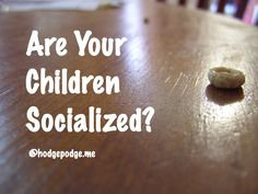 """For the curious - a gentle answer for homeschool families. How to answer the common question, """"Are your children socialized? Toddler Preschool, Toddler Crafts, Classroom Crafts, Joanns Fabric And Crafts, Sweet Tea, Projects For Kids, Craft Stores, Your Child, Homeschool"""