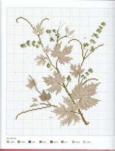 Gallery.ru / Фото #105 - l'Herbier du jardin - Mosca