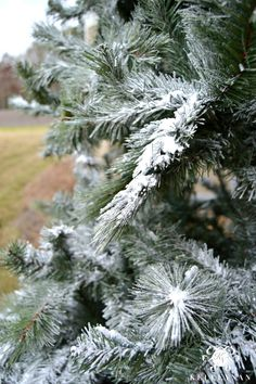 DIY: How to flock a Christmas tree with fake snow