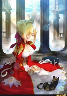 Nero and cats Fate Extra Extella Grand Order Fate Zero, Manga Anime, Anime Art, Character Art, Character Design, Arturia Pendragon, Fate Characters, Fate Stay Night Anime, Fate Servants