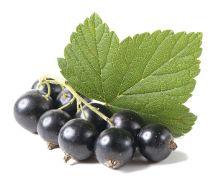 Nectarul de #coacaze negre este util in tratarea gutei. Herbs, Food, Plant, Essen, Herb, Meals, Yemek, Eten, Medicinal Plants