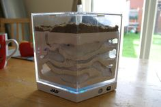 Making your own formicarium