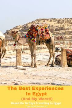 Egypt Travel, Africa Travel, Beautiful Places To Visit, Cool Places To Visit, Africa Destinations, Travel Destinations, Visit Egypt, The Beautiful Country, African Countries