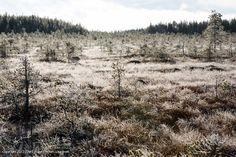 Kansanneva, Finland
