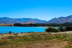Lake Tekapo - Highlights Neuseeland Südinsel