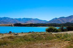 Lake Tekapo - Highlights Neuseeland Südinsel
