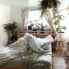 We're dreaming of a white.... bedroom! With a Fiddle fig, some Kentia palms, an Alocasia... by @dear_plants #urbanjunglebloggers #Regram via @www.instagram.com/p/Bc74olLFbSR/?saved-by=ladyscorpio101