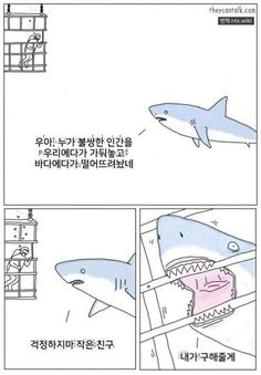 41 Ideas humor memes spanish hilarious for 2019 Funny Animal Comics, Animal Memes, Funny Animals, Talking Animals, Animal Humor, Meme Comics, Misunderstood Shark, Rage Comic, Stupid Funny Memes