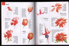 libro flores - Angelines-NINES - Álbumes web de Picasa