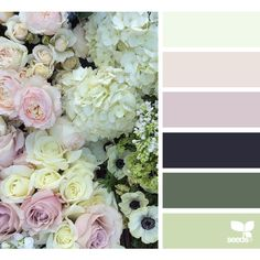 design seeds | search | for all who ♥ color ❤ liked on Polyvore featuring design seeds