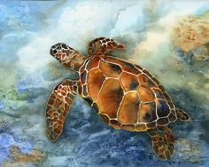 I took a watercolor workshop from Karlyn Holman where this sea turtle was painted. We have a friend in Iowa who is really into turtles and loved the print I made for him.