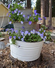 Your buckets and wine barrel look fantastic together and the plants growing in them look so lush. Description from flowerpatchfarmhouse.com. I searched for this on bing.com/images