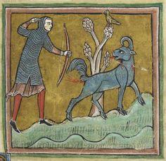 「bestiary animals」の画像検索結果