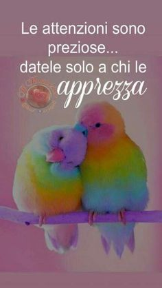 Italian Phrases, Italian Quotes, Spiritual Coach, Beautiful Words, True Love, Animals And Pets, Wise Words, Positive Quotes, Life Quotes