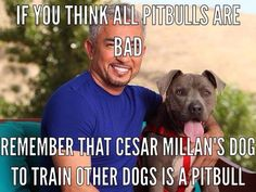 About Cesar Millan - The Dog Whisperer Pitbull Terrier, Terrier Dogs, Bull Terriers, Pitbull Pups, Pitbull Facts, Funny Pitbull, Cesar Millan, I Love Dogs, Puppy Love