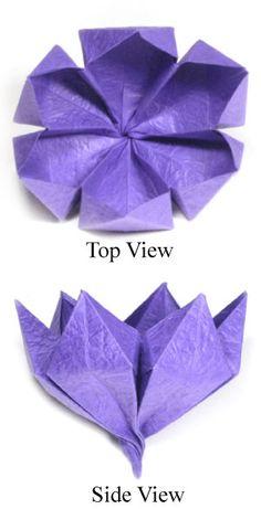 origami crocus flower