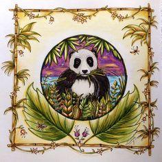 Panda - Magical Jungle by Johanna Basford