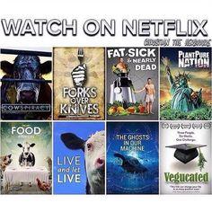 Must watch: Vegan Documentary. Go vegan! Vegan Facts, Vegan Memes, Vegan Quotes, Vegan Documentaries, How To Become Vegan, Why Vegan, Vegan Animals, Vegan Lifestyle, Going Vegan