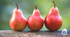 three red pear fruits Install daily horoscope 2019 app on Android. For iOS, find other pin have install button. Menu Simple, Pear Bread, Menu Dieta, Red Pear, Pear Fruit, Fruit Roll Ups, Pyrus, Weight Loss Tea, Lose Weight
