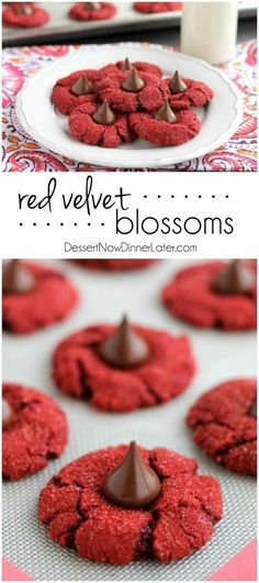 Red Velvet Blossoms - Dessert Now, Dinner Later! - Raquel Prendas - Red Velvet Blossoms - Dessert Now, Dinner Later! Red Velvet Blossoms - only 6 ingredients to make these chewy, chocolatey, red velvet cookies! Perfect for Valentine's Day or Christmas! Valentine Desserts, Valentines Day Cookies, Valentines Baking, Köstliche Desserts, Holiday Baking, Christmas Desserts, Christmas Baking, Delicious Desserts, Dessert Recipes