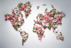 #flower #world