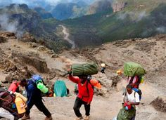 Kilimanjaro Climbing LEMOSHO SHIRA  GLADES ROUTE Africa safari