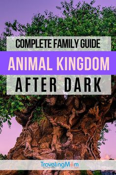 Disney's Animal Kingdom lights up the night in so many magical ways! Get all the tips on evening entertainment and making the most of your Disney World visit during Animal Kingdom After Dark. #TMOM #Disney #WDW #DisneyWorld #AnimalKingdom #DisneyTips | TravelingMom