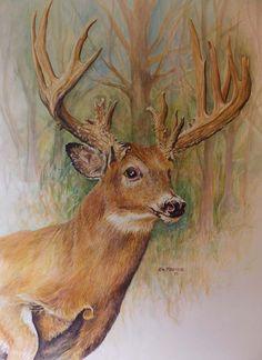 Deer Drawing, Painting & Drawing, American Freedom, Native American, Deer Art, Moose Art, White Tail, Barn Wood, Deer Paintings