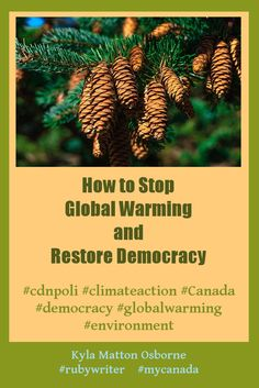 How to Stop Global Warming and Restore Democracy by Kyla Matton Osborne Climate Action, Global Warming, Restore, Climate Change, Restoration, Environment, Canada, Bright, Posts