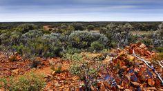 Goldfields WA