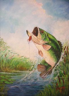 Google Image Result for http://images.fineartamerica.com/images-medium-large/largemouth-bass-jose-lugo.jpg