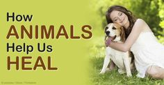 Daniel Allen explains that the healing benefit of an animal is not dependent on a particular dog breed or animal species, but to the person's mental health. http://healthypets.mercola.com/sites/healthypets/archive/2014/10/04/animals-help-people-heal.aspx