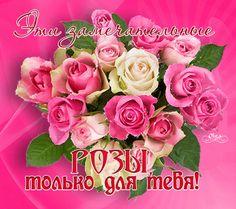 Замечательные розы для тебя