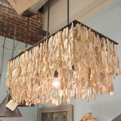 It& the first time we share with you some ideas of decorations made from upcycled Oyster shells! Oyster shells are relatively easy to find, you can find s Driftwood Chandelier, Shell Chandelier, Oyster Shell Crafts, Oyster Shells, Oyster Diy, Pottery Barn, Chandelier Design, Chandelier Ideas, Chandelier Lighting