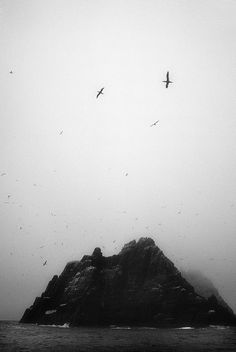 The Wild Skellig | Flickr - Photo Sharing!