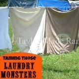 Linked to: taylormadehomestead.com/laundry-problems-on-the-ranch-and-maybe-your-house-too/