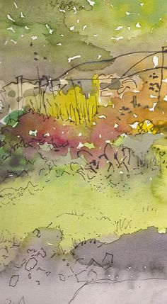 Mark's Garden, Near Bethesda. Ink, watercolour.