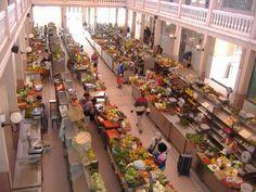 Fauna of Cape Verde | Market at Mindelo, Sao Vicente, Capital of Culture Cabo Verde