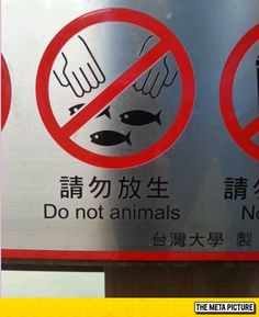 Oh, I'm Going To Animals
