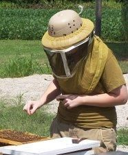 Want to keep bees but not sure how to protect yourself? Discover how much protective clothing to wear while near the hives. Bee Safe, Working Bee, Mother Earth News, Bee Keeping, Bees, Honey, How To Wear, Clothes, Nice