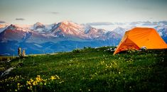 camping with flower Camping Photo, Outdoor Gear, Tent, Flowers, Store, Tents, Royal Icing Flowers, Flower, Florals