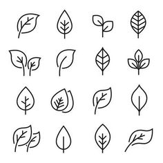 Leaf line icon set. Fertility and growth symbol, fresh natural beauty design element, youth and care. Leaf outline art illustration isolated on white background. Simple Doodles, Cute Doodles, Growth Symbol, Leaf Symbol, Leaf Vector, Icon Design, Logo Design, Flat Design, Design Design